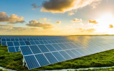 A naperőmű alapjai: nem napot tenyésztenek a napfarmon